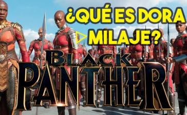 el equipo elite dora milaje en black panther